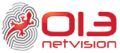 013 Netvision